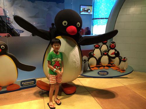 这只企鹅。。。还是不晓得。。。