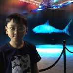 No bats but sharks at Parkview Museum